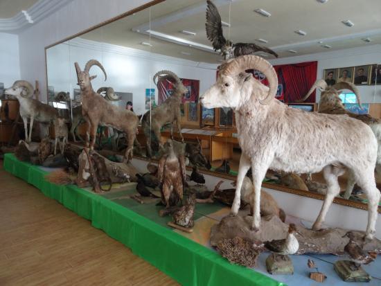 Khorog, Tadschikistan: хорог музей