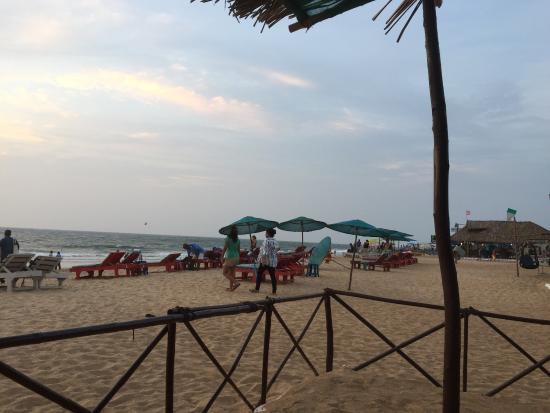Sea Mist Resort