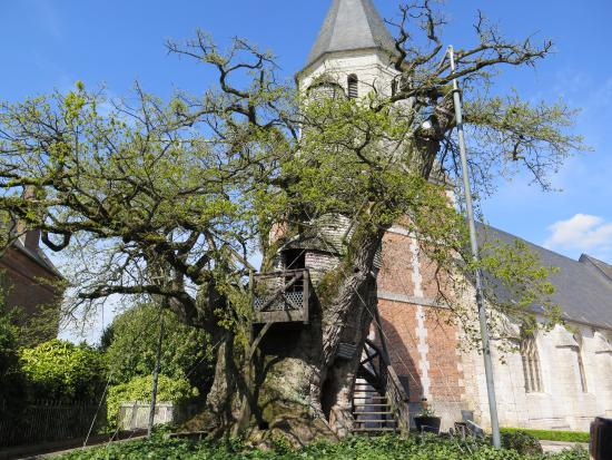 Chene Chapelle
