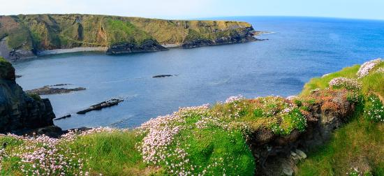Бэллибьюнион, Ирландия: Bromore Cliffs