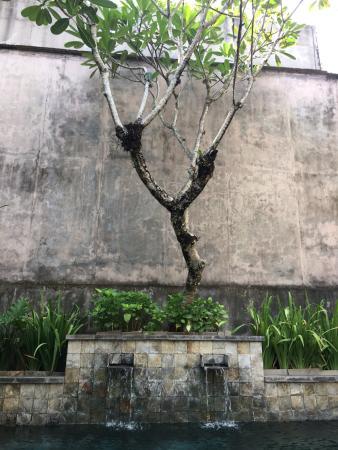 Courtyard of 3 br villa