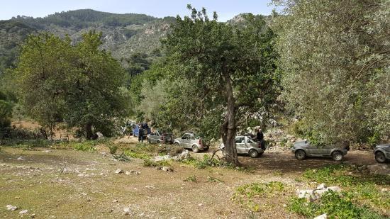 Jeep Safari Mallorca: escale