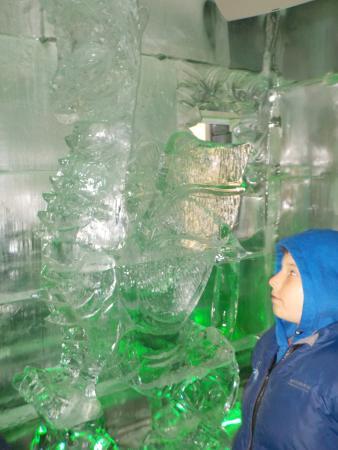 Queenstown, Nueva Zelanda: ice bar