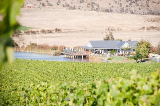 Richmond, Australia: Puddleduck cellar door and vineyard