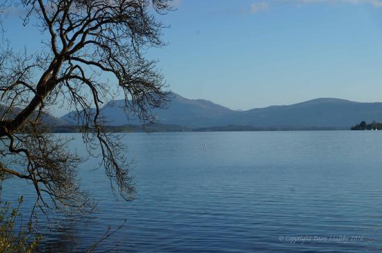 Arden, UK: A calm Loch