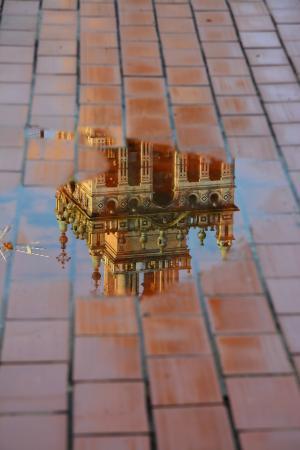 Hotel Convento La Gloria: Reflet de la Giralda sur une flaque d'eau de la terrasse