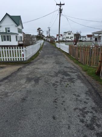 Bay View Inn: Main Ridge road thru Tangier Island