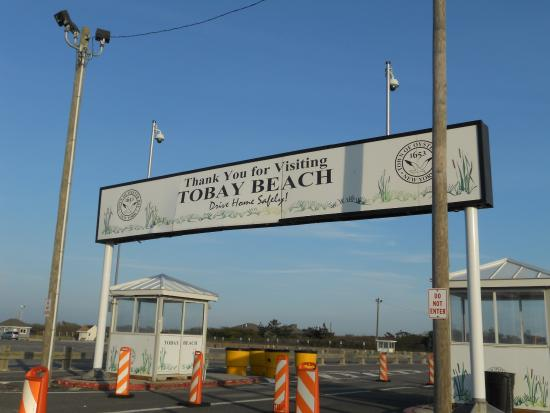 Tobay Beach Photo