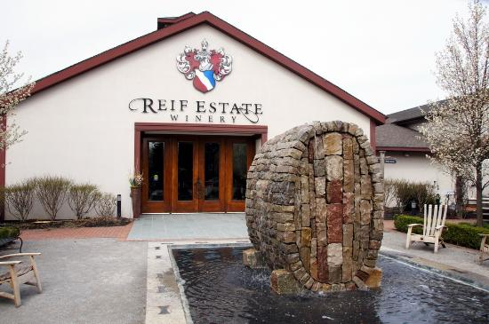 Image result for reif estate winery