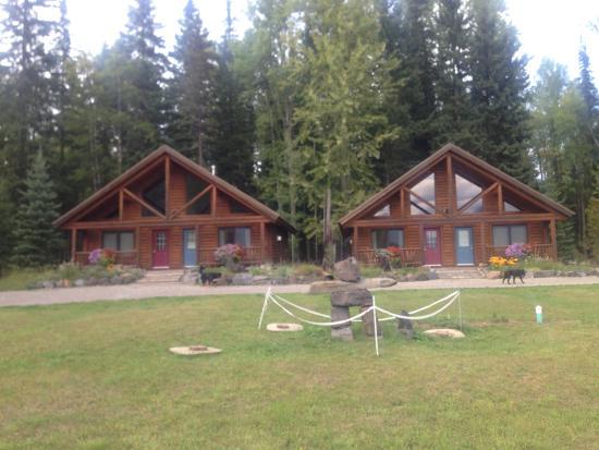 Birch Meadows Lodge B&B : the two split lodges
