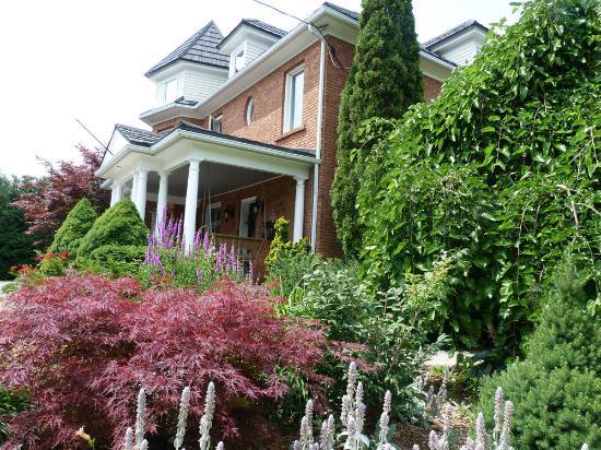 Arcadia House B&B: Summer foliage