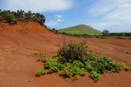 One of the small red deserts on Santa Maria (South-East)