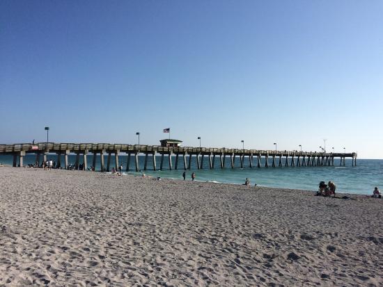 Venice, FL: photo2.jpg