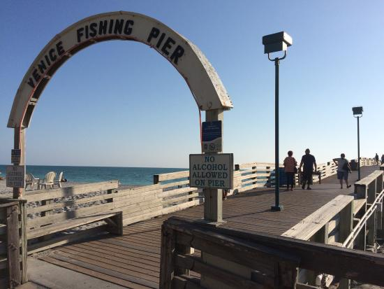 Venice, FL: photo4.jpg