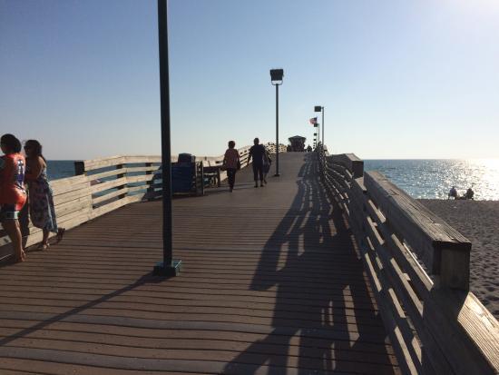 Venice, FL: photo5.jpg