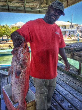 Little Arches: We bought this yellowfin grouper from the fishemen dock, over 13 pounds!