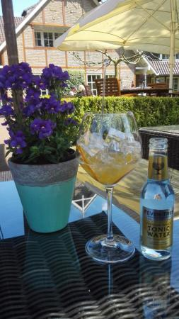 De Lutte, เนเธอร์แลนด์: Drinks in the garden