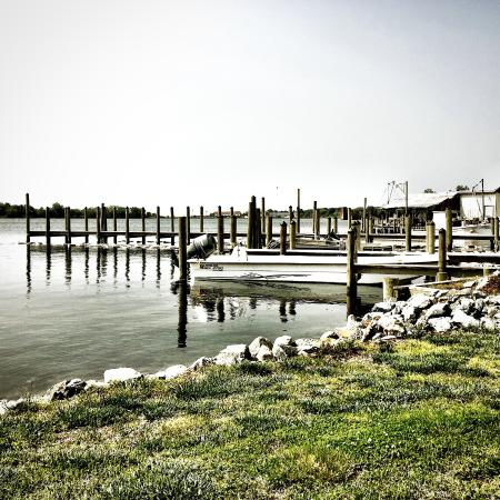 Reedville, VA: Beautiful view right outside our door.