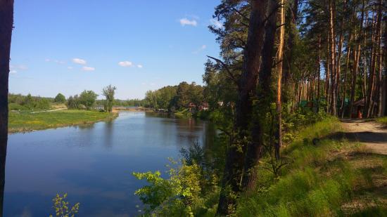 Tambov Oblast Resmi