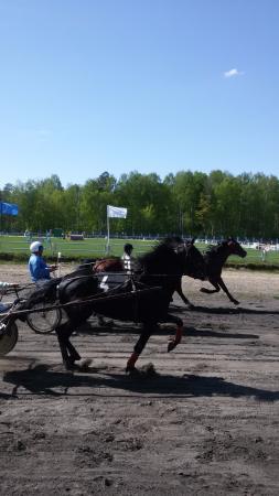 Kostroma Race Track