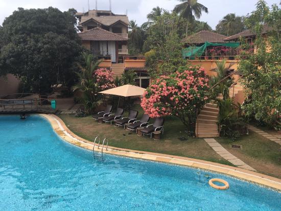 Αντζούνα, Ινδία: photo1.jpg