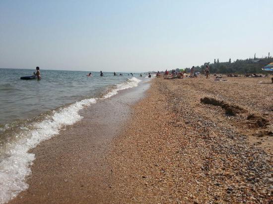 Russian Sea of Azov Coast照片