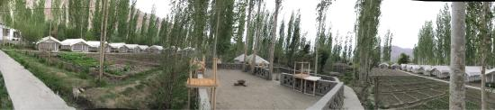 Nubra Valley, Hindistan: Mystique Meadows Swiss Cottage Camp