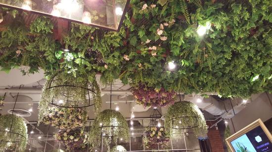 hanging plants at audrey picture of audrey cafe des fleurs bangkok tripadvisor. Black Bedroom Furniture Sets. Home Design Ideas