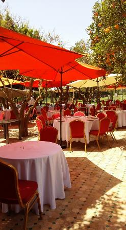 Oulad Teima, Fas: Restaurant extérieur