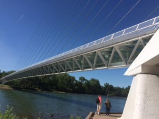 Sundial Bridge: view from below the bridge