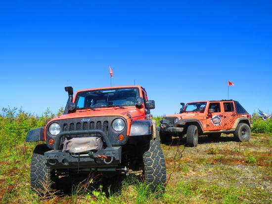 Sainte-Anne-des-Monts, Canada: Nos 2 Jeeps!!