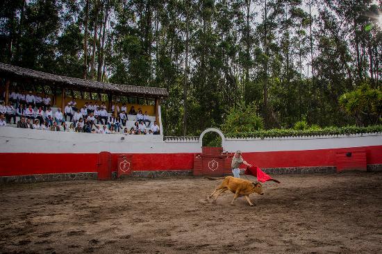 Hacienda Hosteria San Luis: Corrida de Toros