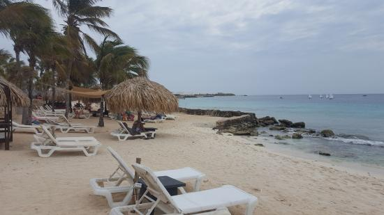 Plaza Resort Bonaire: Strand van het resort