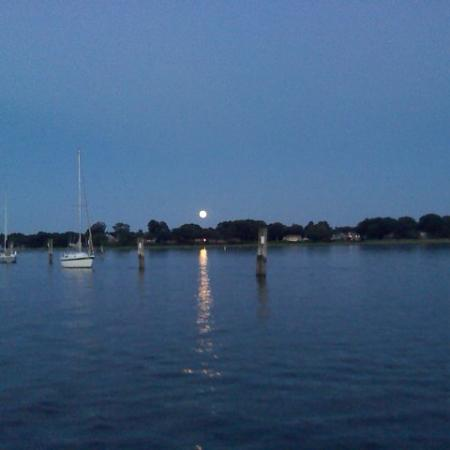 Summer Wind Charters: Moonrise on the river.