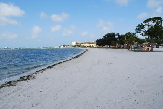 Gulfport, FL: Beach and View