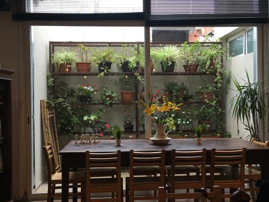 Comedor y plantas de jardín de invierno - Picture of Hotel Dodo, Mar ...