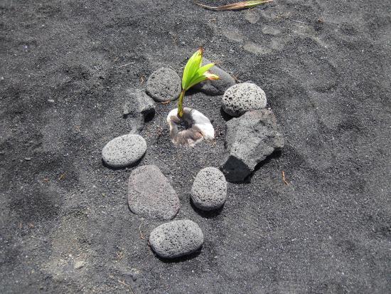 Pahoa, Hawái: Kaimu Beach Park