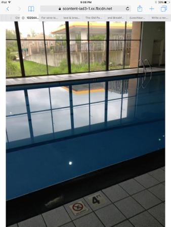 Wickliffe, OH: Look at how clean the pool area is- they take pride in this! It has warm clean bath like water y