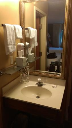 Hershey Farm Inn: The sink separate from the shower and toilet