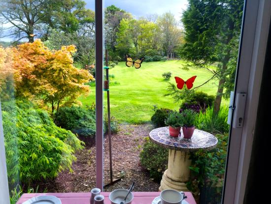 Sallyport House: View of the backyard from the breakfast room.
