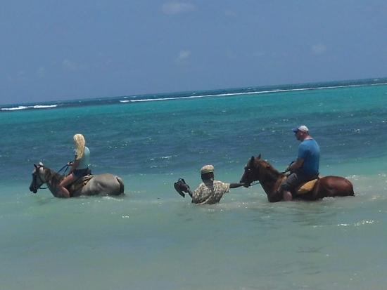 Blue HoleMontego Bay JamaicaLiberty Tours Picture Of Liberty - Liberty tours jamaica