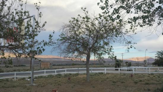 Ranch Motel: 20160506_191552_large.jpg