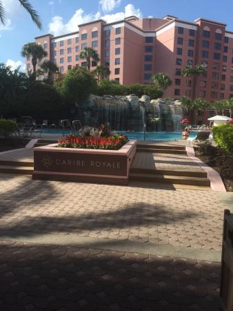 Caribe Royale All Suite Hotel & Convention Center: photo1.jpg
