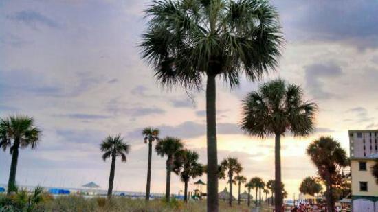 Saint Pete Beach, FL: Great drinks, great view