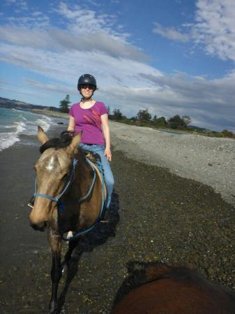 Clive, New Zealand: Boutique Horsetreks Day Tours