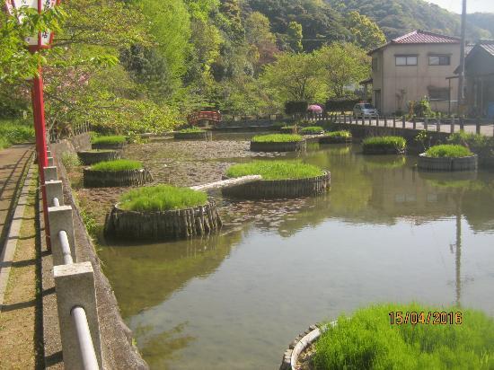 Nanao Castle Ruins