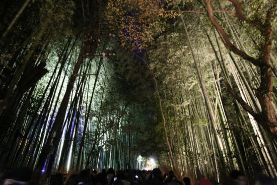 京都嵯峨野散歩