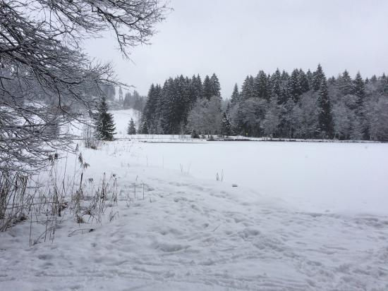 Schwarzsee: photo1.jpg