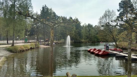Het Vennenbos Zwembad.Vanaf Het Zwembad Richting Het Vlot En De Waterfietsen Foto Van