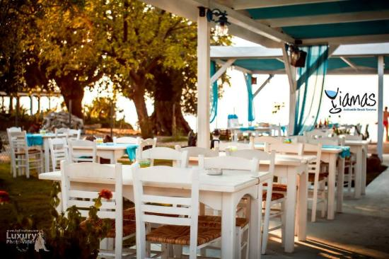 Yiamas Authentic Greek Taverna
